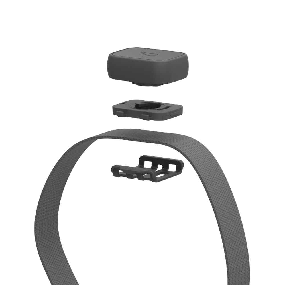 Whistle 3 GPS Pet Tracker & Activity Monitor | Whistle on