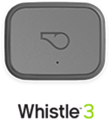 Whistle 3 Device, Grey